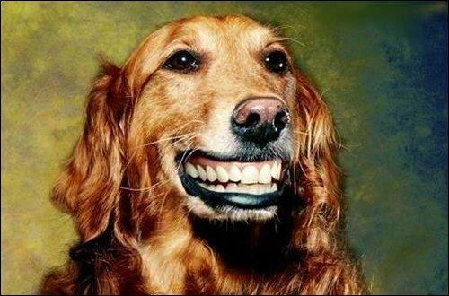 Чаще улыбайся!